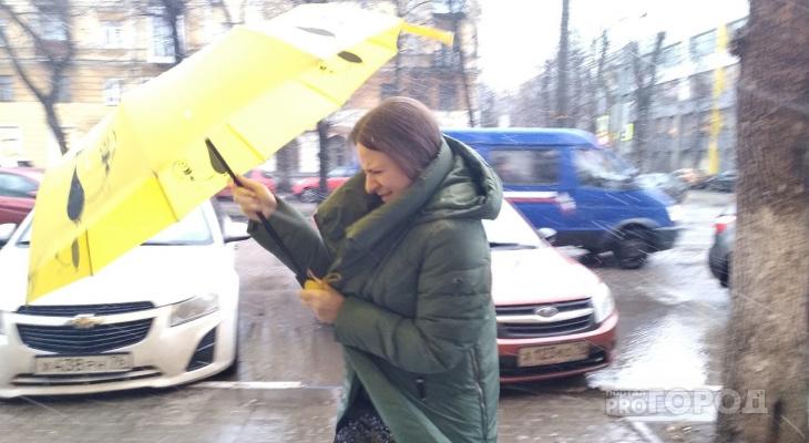 Сидите дома: о ЧС с ливнями в Ярославле предупреждает МЧС