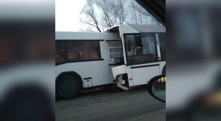 Снесло половину автобуса: под Ярославлем произошло страшное ДТП