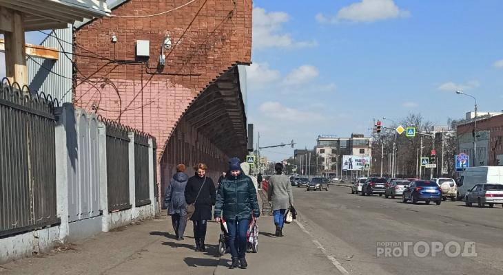 Карантин по чуме в Ярославле: чиновники экстренно обратились к жителям