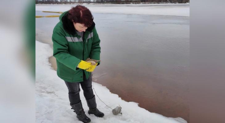 Росприроднадзор обвинил мэрию Ярославля в загрязнении воды