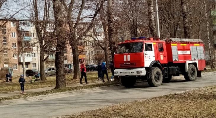 За день в Ярославской области сгорело 263 гектара: причины