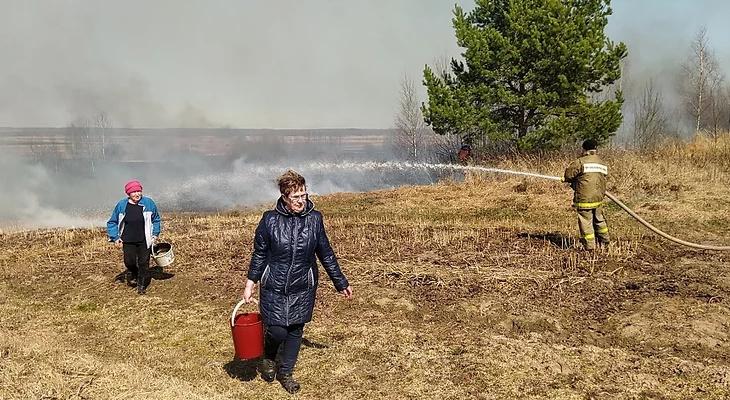 Огонь подбирался к домам: под Ярославлем пожарные спасли деревню