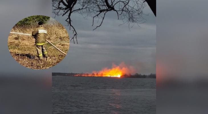 Снова горят леса: в Ярославле поджоги не заканчиваются