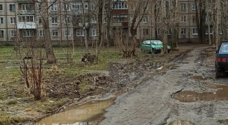 Передовичку нарисовали, а во дворе грязь: жители Брагино возмущаются в социальных сетях