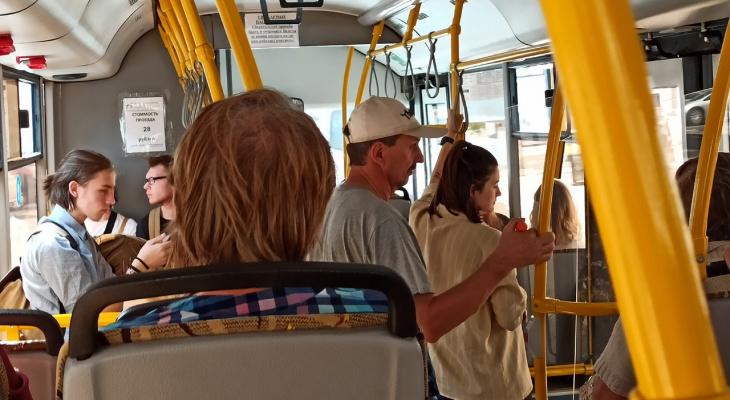 На праздники в Ярославле пустят дополнительный транспорт: расписание