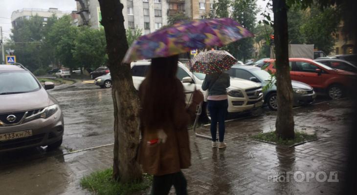 Экстренное предупреждение МЧС: что ждет ярославцев 3 мая