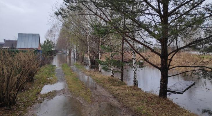 """""""Разлилась река Великая"""": ярославцы показали последствия подъёма уровня воды Волги. Видео"""