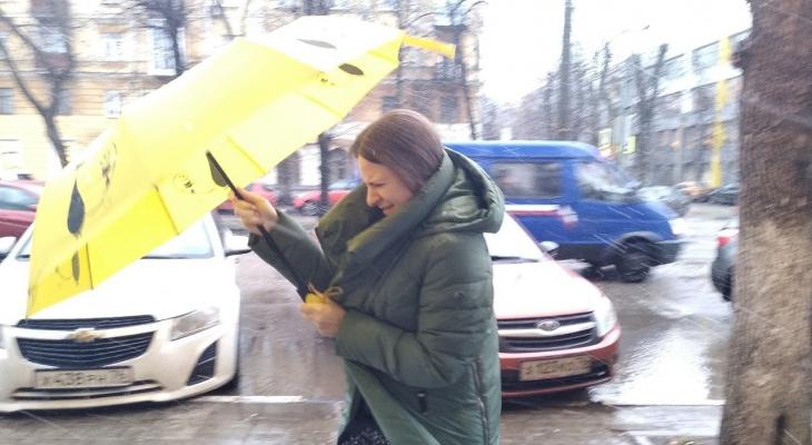 Дожди и мокрый снег: синоптики предупредили ярославцев о непогоде