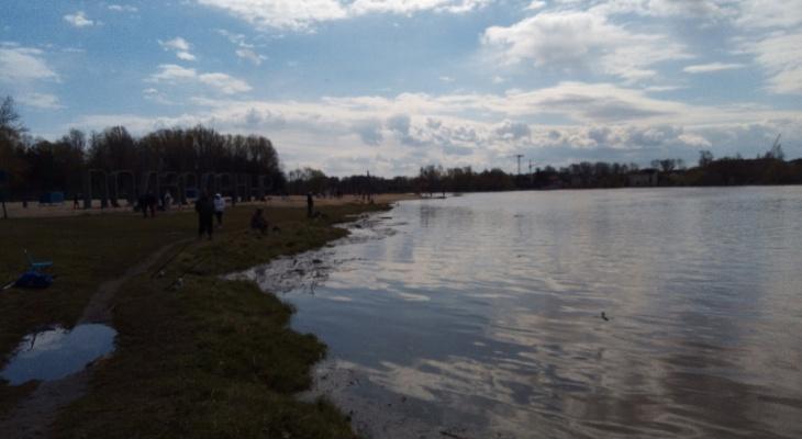 Вода заливает дома: что происходит в Ярославской области