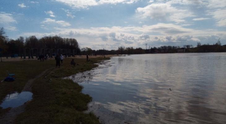 Подтопило в два раза больше дач: что происходит в Ярославской области