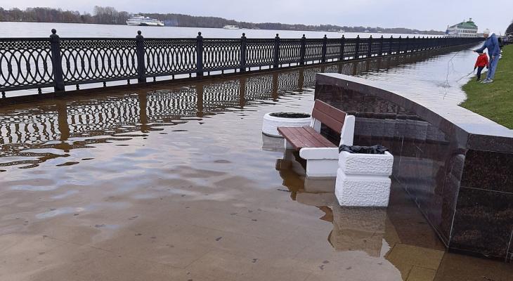 В Ярославле уровень воды превысил все нормы, власти созвали экстренный оперштаб.
