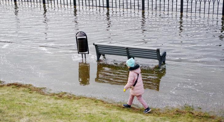 Случается раз в 60 лет: спасатели рассказали о критическом потопе в Ярославле