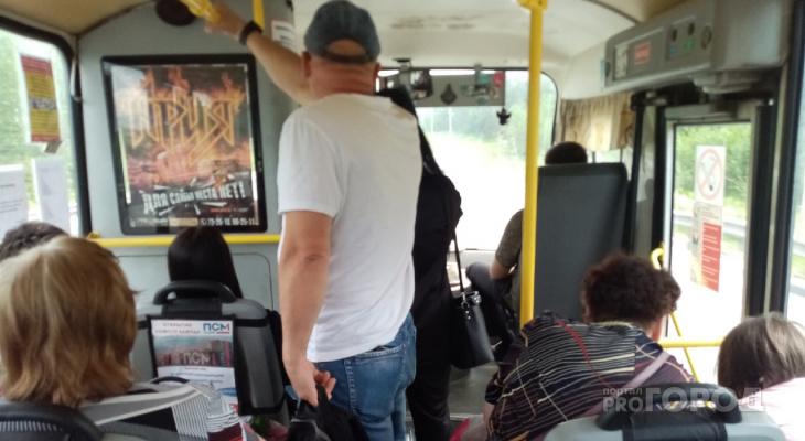 Кто будет возить: мэрия Ярославля назвала потенциальных перевозчиков