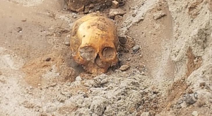 В Ярославле на Волжской набережной найден скелет