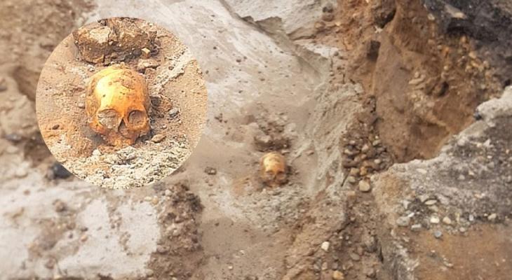 Человеческий череп на набережной: ярославский следственный комитет проверит страшную находку