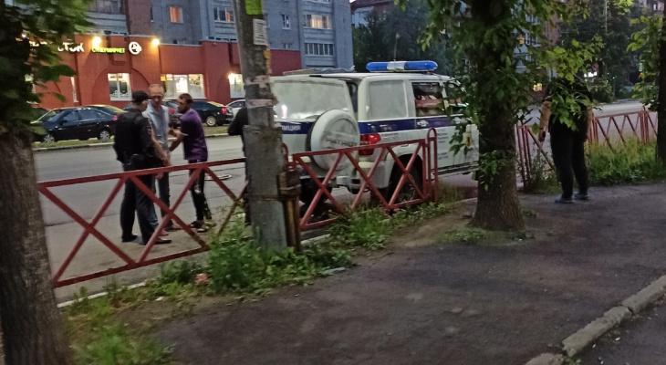 Контузия глаза: собачник-мститель с поводком избивает ярославцев за пьянство