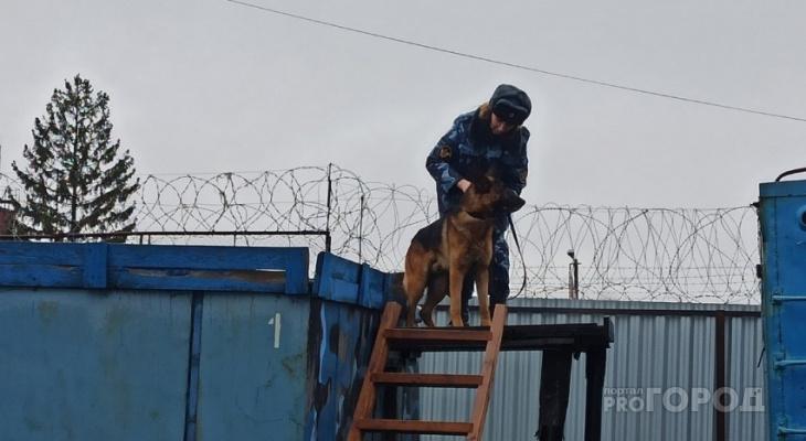 В «пыточной» колонии Ярославля совершил суицид молодой заключенный