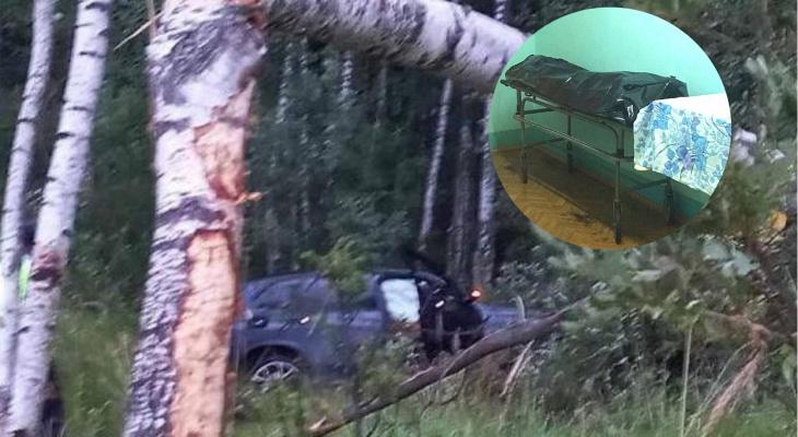 Удар был смертельным: под Ярославлем молодой водитель погиб в ДТП