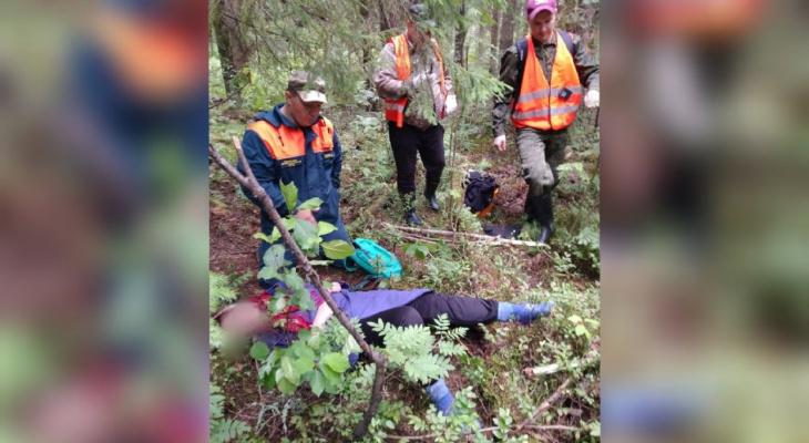 """""""Ее уже похоронили"""": под Ярославлем пропавшая бабушка выжила в лесу, кишащем дикими медведями"""
